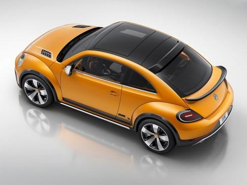 Beetle_6